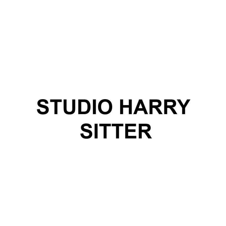 Official Logo for Studio Harry Sitter